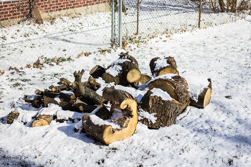 February Winter Blast by Tim Girton
